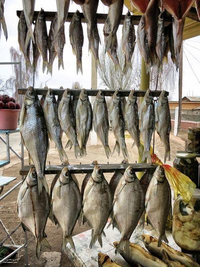 Raw Fish Hanging At Market Stall