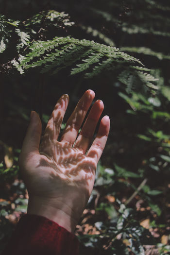 Cropped image of woman hand with shoulder by plants at park