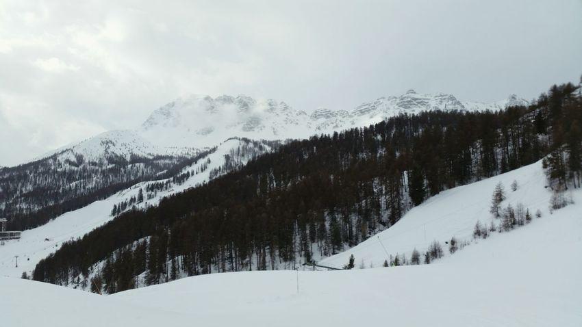 Vars Ski Snow ❄ Landscape
