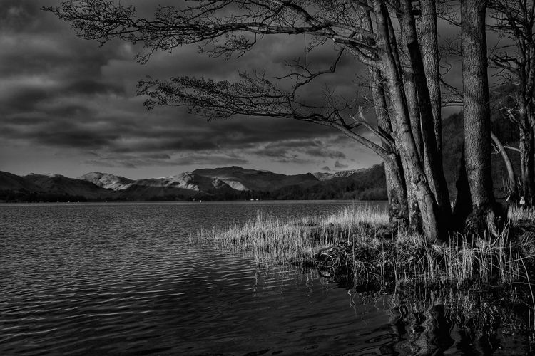 Very early morning on Ullswater. Taking Photos Relaxing Enjoying Life Tranquility EyeEm Nature Lover Malephotographerofthemonth The Lake District  Ullswater Countryside Landscape Photography Is My Escape From Reality! Tranquil Scene Blackandwhite Sunrise First Light Of The Day
