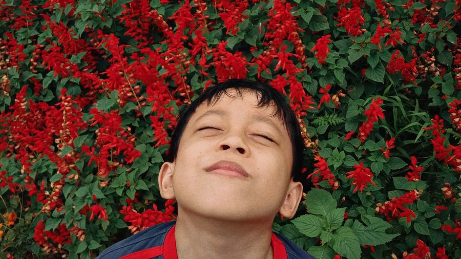 Close-up of boy with red flower