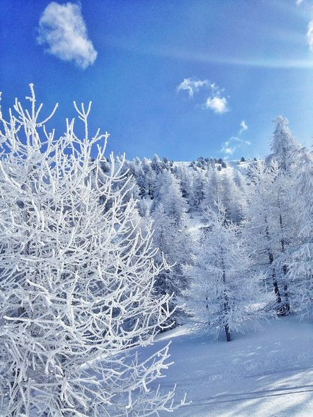 Snow Holiday No Filter White Hanging Out Hello World Enjoying Life Taking Photos Minimalism Vars Colour Of Life