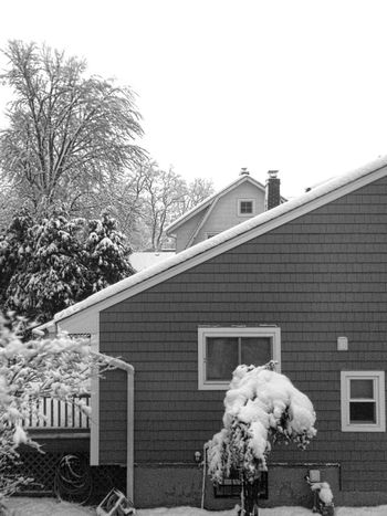 Powerless Black And White Suburbia Long Exposure Snow Dog Sky