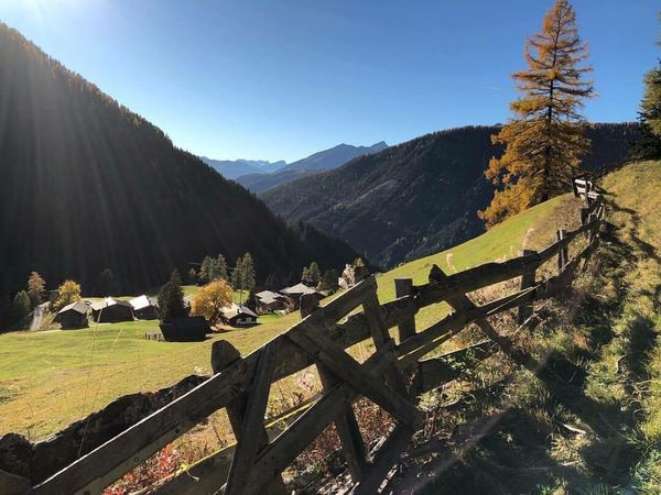 Mountain Nature Sunlight Tranquility Landscape Day Beauty In Nature No People Scenics Outdoors Tree Grass Clear Sky Sky Monstein Davos Perspectives On Nature