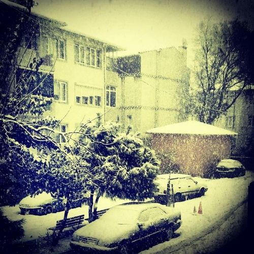 Snow Snowing Winter Tagsforlikes cold ice white weather sky skies frosty frost chilly TFLers nature snowflakes instagood instawinter instasnow photooftheday snowfall blizzard