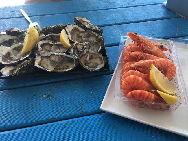 Freshseafood Lobstershack Oyster  Colorblocking
