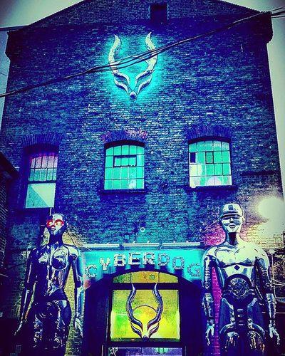 Cyberdog CambdenTown London Surreal Fabulous Newexperience