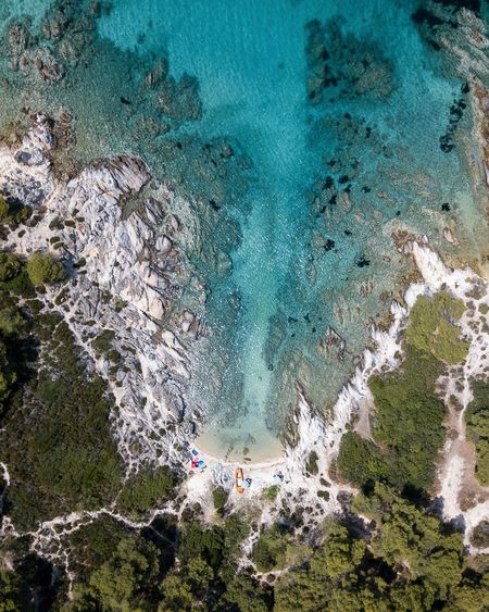 wild beach Mavic Pro Dji Drone  Dronephotography Minimalism Minimal Nature Nature Photography TheWeekOnEyeEM TheWeek On EyEem Greece Water Tree Backgrounds High Angle View Aerial View Beach Close-up Turquoise Sand Bay Beach Umbrella Shore Wave The Great Outdoors - 2018 EyeEm Awards The Traveler - 2018 EyeEm Awards The Great Outdoors - 2019 EyeEm Awards