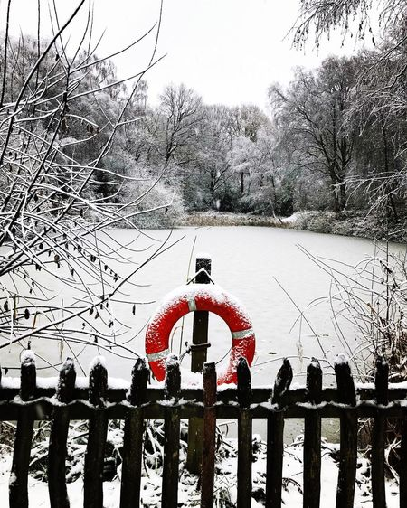 Red Fence Snow Frozen Lake Outdoors Day Tree Sky Men Real People Only Men
