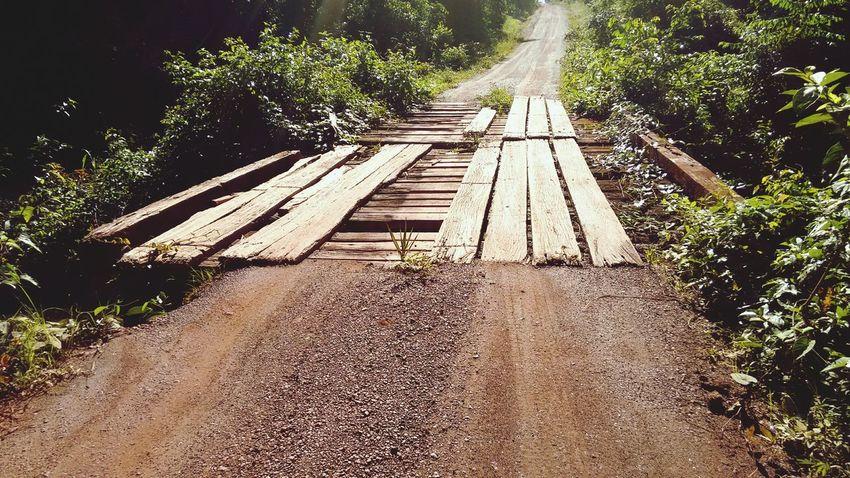 Passeio pelo Cantá. Interior Do Estado Bridge Wood