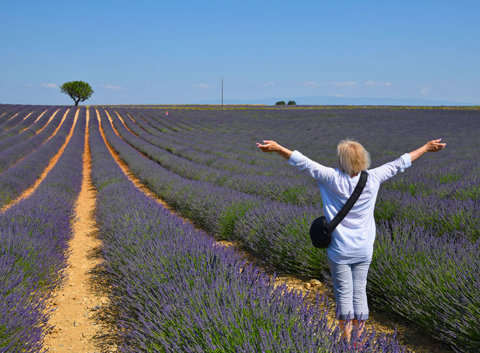 Woman over lavender field France Provance Provence Agriculture Beauty In Nature Field Flower Flowering Plant Flowers Growth Human Arm Land Landscape Lavanda Lavander Lavander Flowers Lavender Nature One Person Outdoors Plant Purple Sky Women A New Beginning