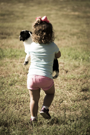 Rear view of girl with sheep on field