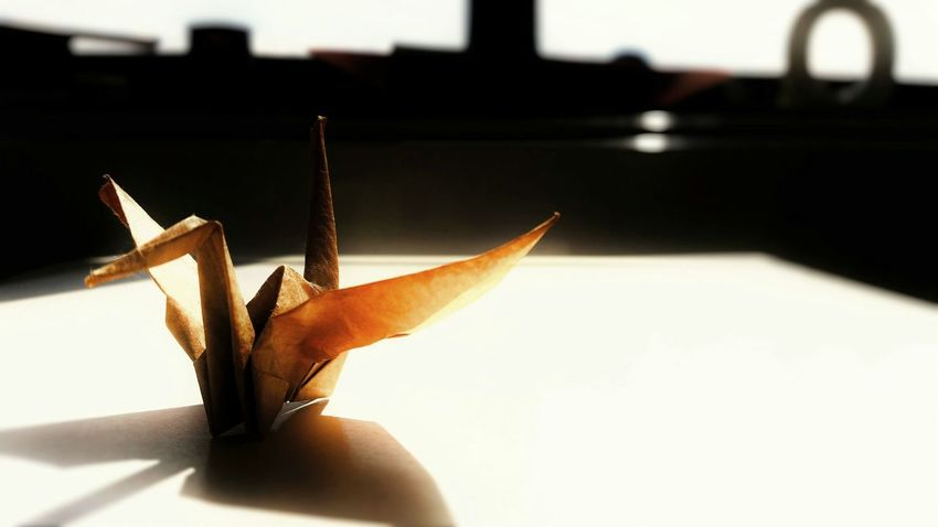 """""""Origami Swan"""" by A.M. (Omegatainment/Art Ascetique) - Omegatainment Ascetique Art StillLife Stillleben Origami Origami Swan Paper Art Sunny Atmosphere Licht Und Schatten Light And Shadow"""