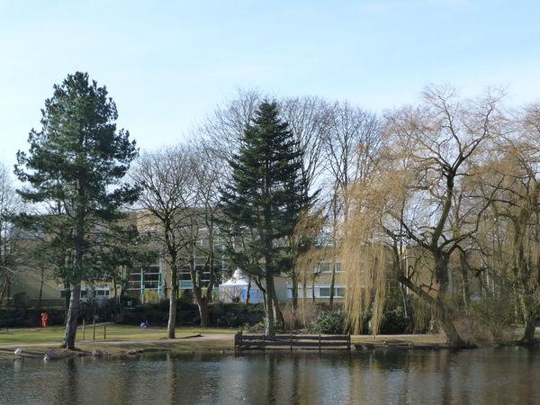 Neumünster Nature_collection Schleswig-Holstein Teich Park Stadthalle Stadtpark