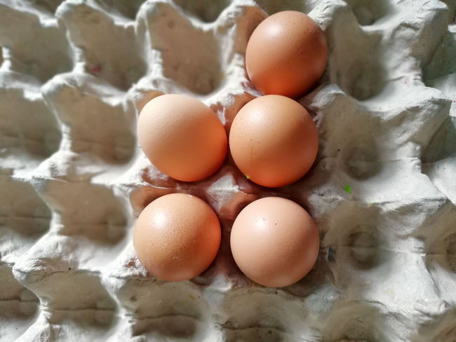 Egg Yolk Egg Carton Brown Eggshell Raw Food Egg Protein Close-up Food And Drink