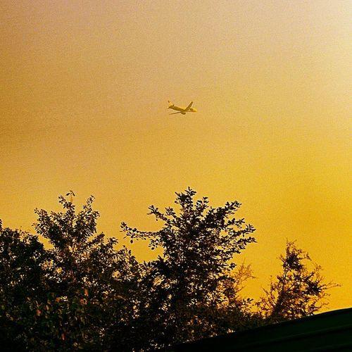 Up Abovetheworld Sohigh Nexus5photography Captured Boeinginaction