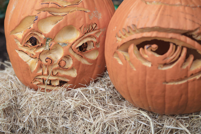 Two dramatic Halloween pumpkins on straw bale American Culture Autumn Carving Close-up Craft Creativity Decorations Fall Gourds Halloween Holiday Tradition Jack O' Lanterns Natural Light No People October Orange-colored Pumpkins Straw Textures Vegetables
