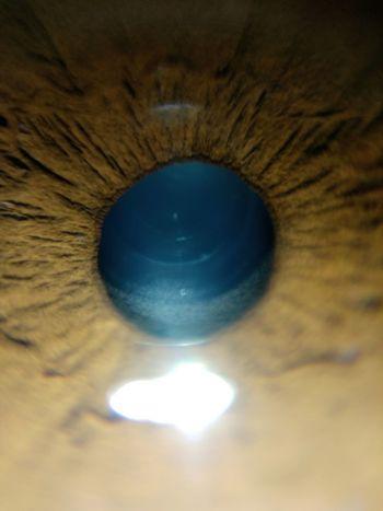 MyEyes♥ The Week On EyeEm Day Eyeball Eyelash Eyesight Illuminated Micro Photography Sensory Perception
