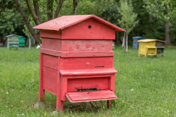 Red beehive box on grassy field