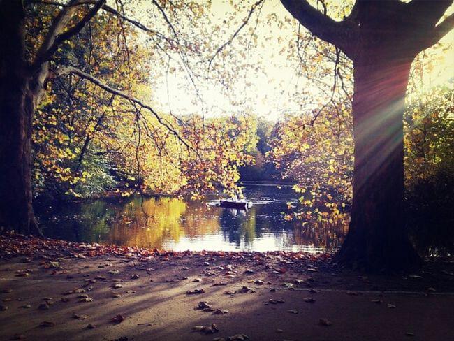 Goldener Oktober Colors Of Autumn Indian Summer October Sweet October!