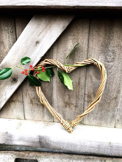 Love Love ♥ Heart Shape Valentine's Day  Valentine No People Heart Shape Wood - Material Day Close-up Leaf Plant Nature Chritmas Holly Willow Heart Holly Berry Christmas Heart Love Heart