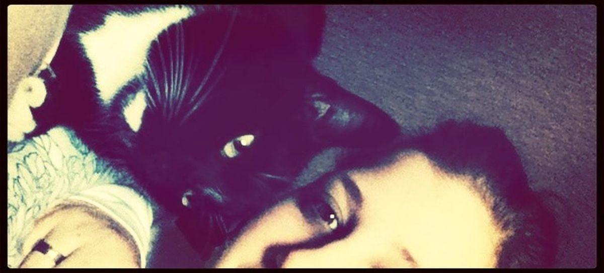 Chilli Milli with CAT ?
