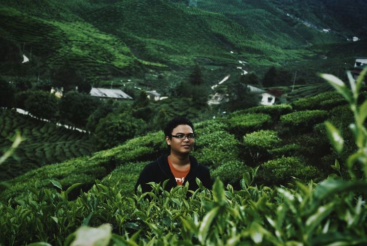 Man standing at tea plantation in cameron highlands
