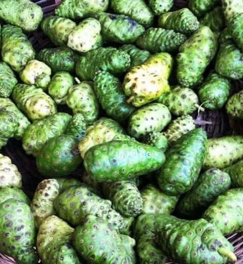 Weird Food Vegetable Freshness Green Green Green!  Bahia/brazil Feira De São Joaquim Salvador Bahia Popular Market