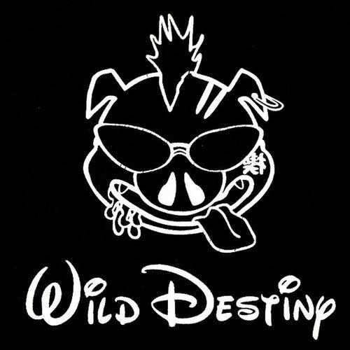 Wild Destiny. コノヨカギリ 服を片してたら久々出てきた!