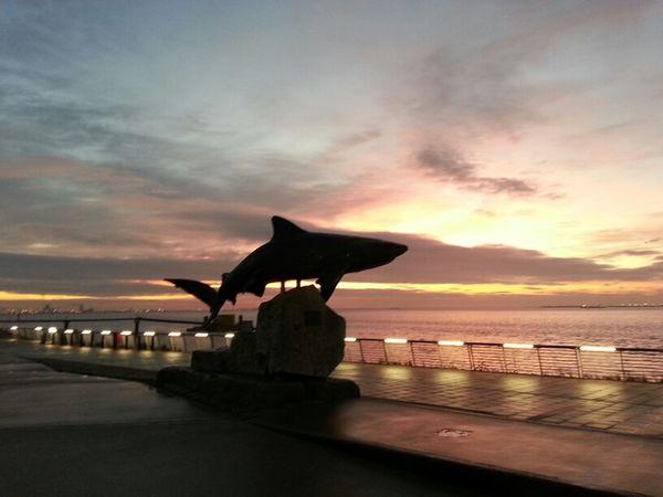 River Sunrise Good Morning Statue Shark Hull Embankment
