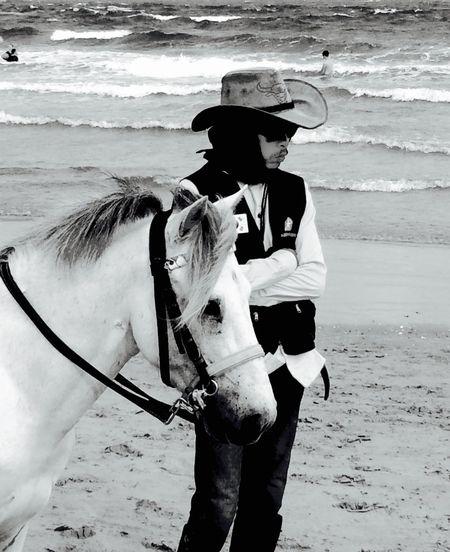 ~ c o w b o y ~ - Beach Candidshot Iphonephotography Thailand Horse