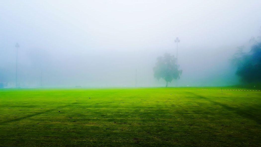 Landscape Landscapes With WhiteWall Sport Arena Football Field Green Green Field Fog Foggy Foggy Morning EyeEm Nature Lover EyeEm Best Shots EyeEm Gallery EyeEm Best Shots - Nature EyeEm