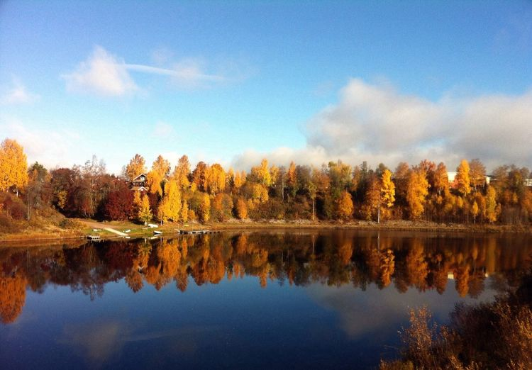 Reflection of autumn trees on calm lake against sky