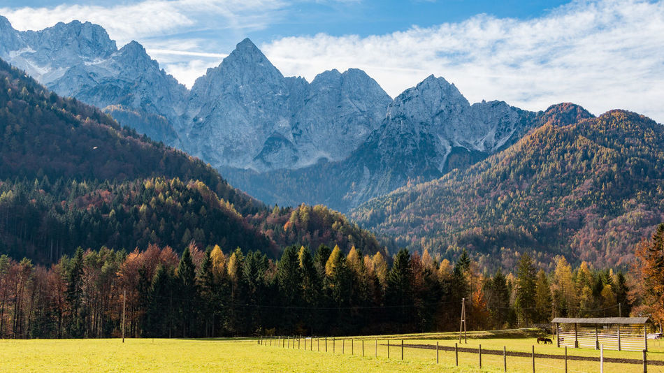 Alpine Alps Autumn Autumn Colors Cloud - Sky Julian Alps Landscape Mountain Mountain Peak Mountain Range Nature No People Pine Woodland Sky Slovenia Tree