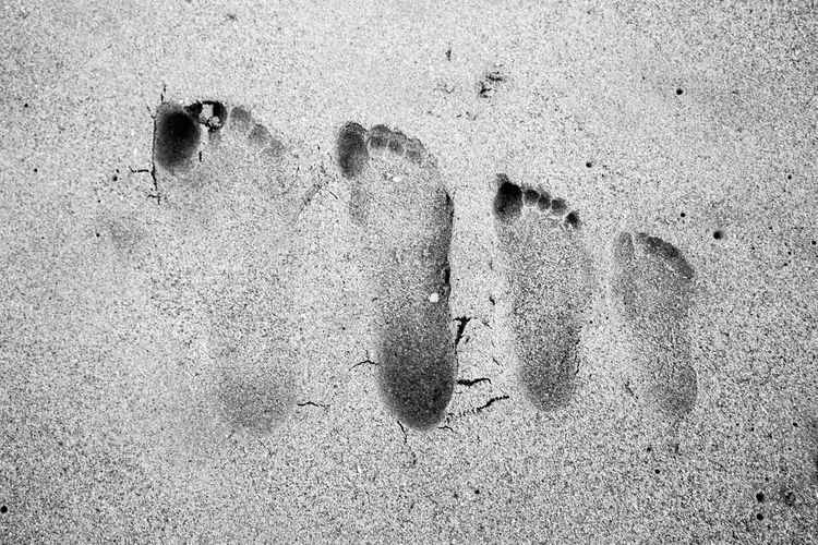Beach Close-up Day Family Fingerprint FootPrint Footprints Full Frame High Angle View Nature No People Outdoors Sand