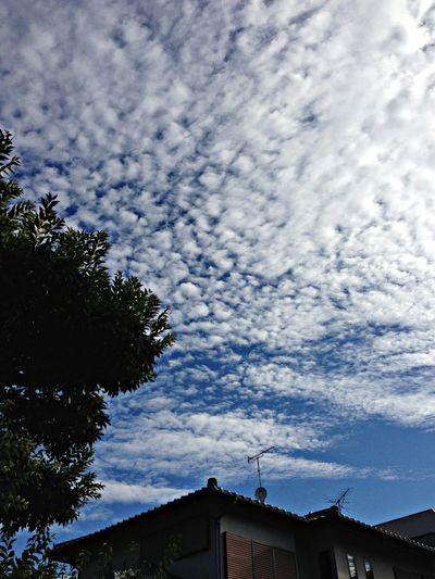 nice view of the sky