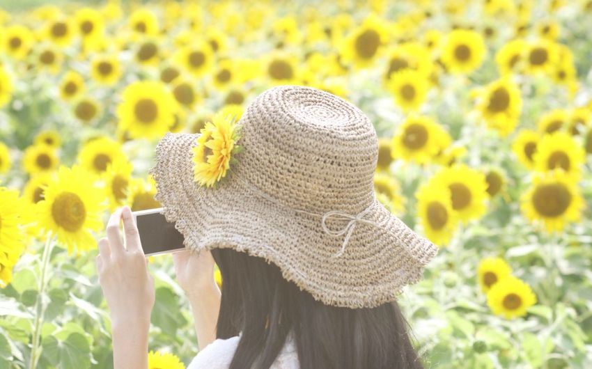 Rear View Of Woman Taking Picture From Mobile Phone