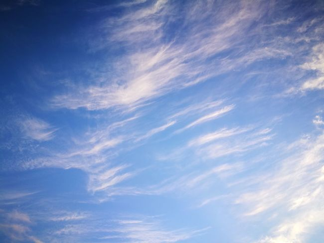 winter sky Blue Cloud - Sky Sky Nature Low Angle View No People Sky Only Backgrounds Cirrus Beauty In Nature Outdoors Scenics Day