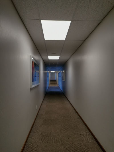My hallway to infinity. My House Inside Home House Colors Carpet Indoors  Light Nopeople Building Ceiling Window Empty Passage Modern Door Perspective Inside Day Glass - Material Reflection Flooring Family Wall Corridor Built Structure vanishing point Hallway Ceiling Light  Interior