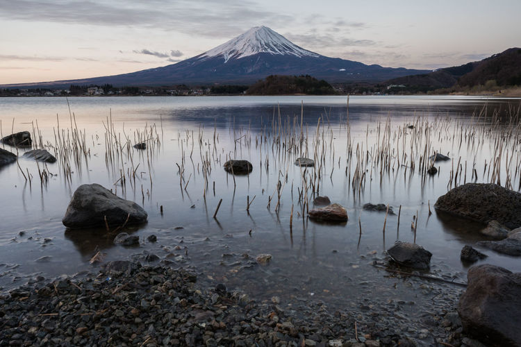 Mt Fuji Beauty In Nature Fuji Lake Morning Mountain Mountain Range Mtfuji Nature Reflection Scenics Shore Sky Sunrise Water