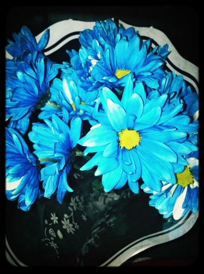 Flowers for my Anniversary