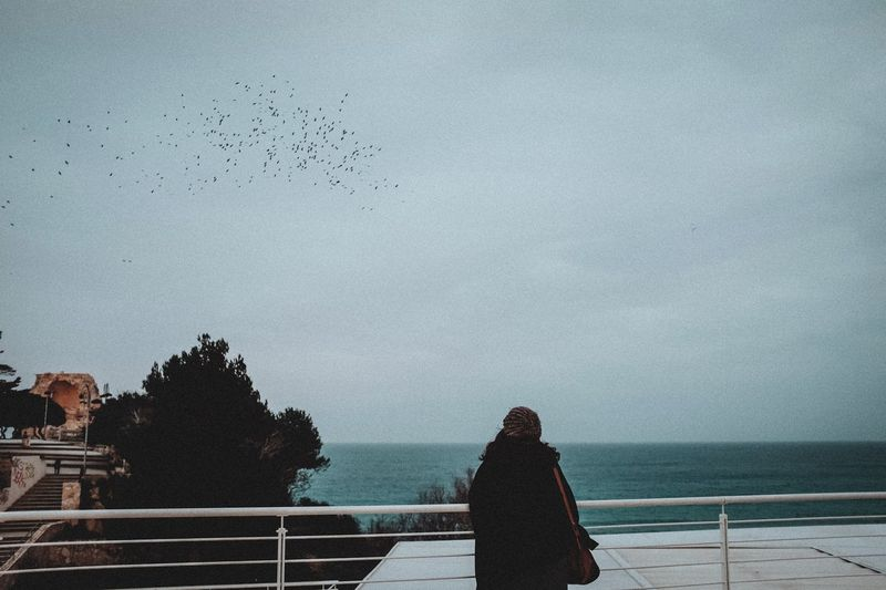 Fuji X100t Sea Sky Bird Water Nature Large Group Of Animals Flock Of Birds Flying Outdoors Horizon Over Water People Rear View Day Real People Autumn Mood