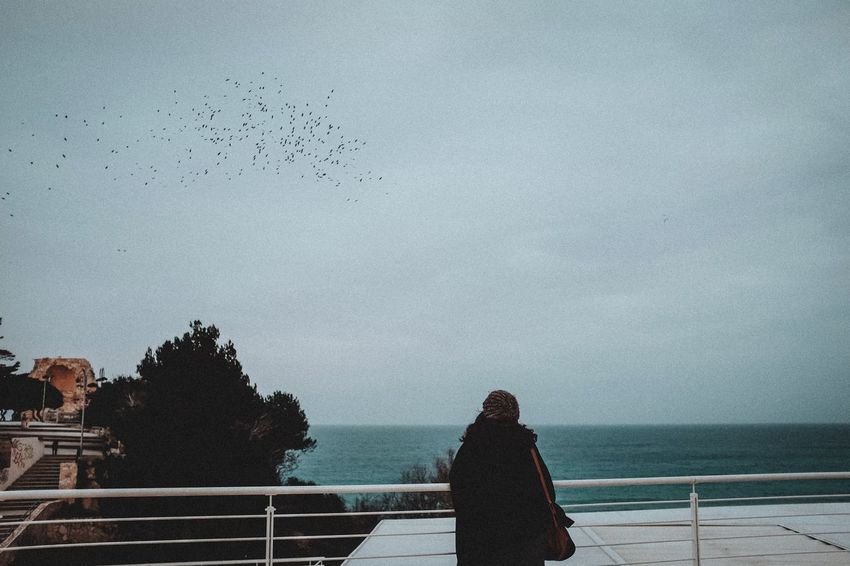 Fuji X100t Sea Sky Bird Water Nature Large Group Of Animals Flock Of Birds Flying Outdoors Horizon Over Water People Rear View Day Real People