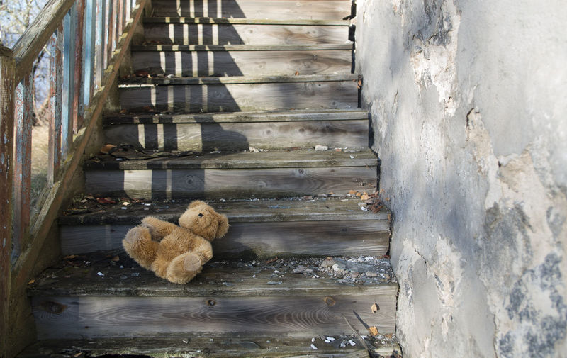 High angle view of teddy bear on wooden steps during sunny day
