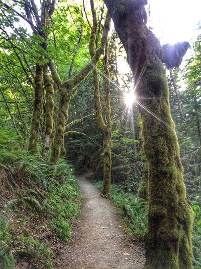Nature On Your Doorstep