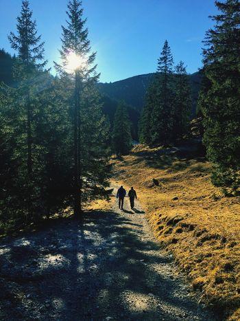 Enjoying The Sun On A Hike Quality Time Kids Blue Sky Hiking Gapa1516