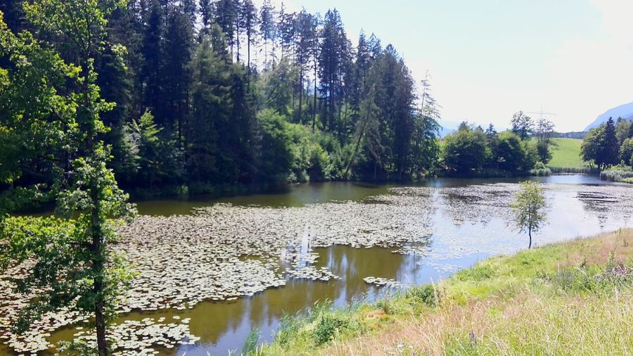 See Schön Schönes Wetter Sommer 2016 Ferien 2016
