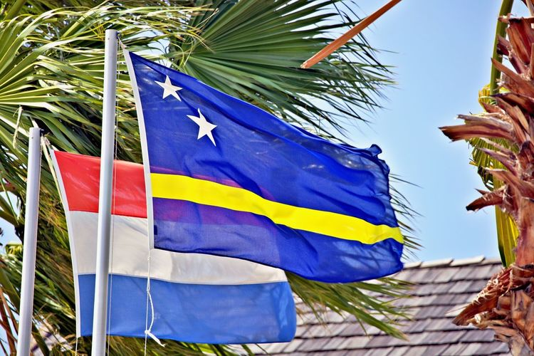Flag Tropical Climate Patriotism Wind Palm Tree Star Shape Outdoors Striped Curacao And The Netherlands Flag Of The Netherlands Flag Of Curacao Friendship Caribbean Life