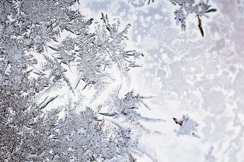 Frozen iced background. Ice pattern on the glass. Macro frost background Ice Icy Freeze Frozen Winter Wintertime Macro Snoflakes Ice Pattern Crystal Crystals Frost Frosting Glare Sparkles Texture Textures and Surfaces Whitefrost Rime Ice