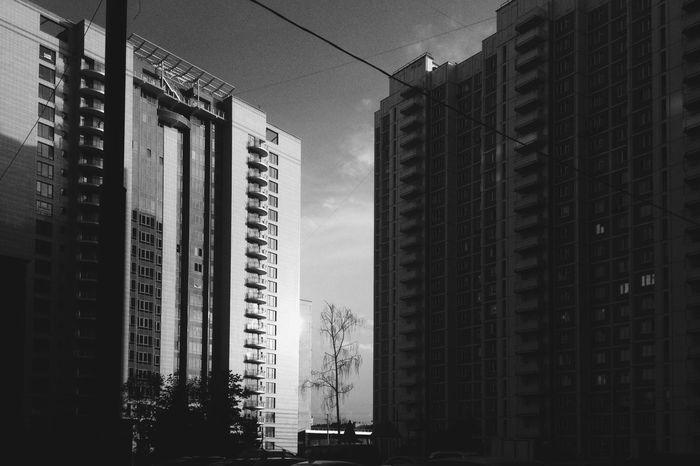 Skrwt Urban Landscape Connected With Nature EyeEm Best Shots - Black + White